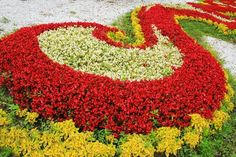 How to Design Large Flower Beds
