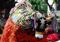 Dança folclórica brasileira. Bumba meu boi.
