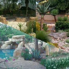 See 90 photos and 3 tips from 675 visitors to Centurion. Landscaping, Yard Landscaping, Landscape Architecture, Garden Design, Landscape Design
