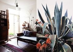 sfgirlbybay / bohemian modern style from a san francisco girl / page 10