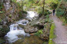 La fantástica ruta del río Alba, en Sobrescobio.