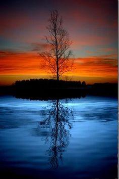Sunrise Sunset Lonley Tree