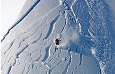 A coroner's report shows male snowmobilers and skiers are the highest percentage of avalanche victims. #skiandsnowguide #snowmobile #ski #snowboard #avalanche #safety #mountainsafety   BY STEVEN THRENDYLE MARCH 14, 2013