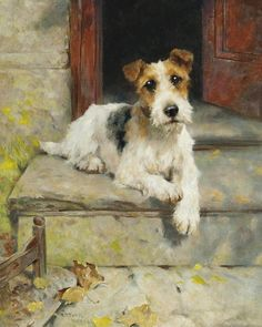 View Waiting for master, a wire coated fox terrier By Arthur Wardle; oil on canvas; Access more artwork lots and estimated & realized auction prices on MutualArt. Perro Fox Terrier, Perros Bull Terrier, Fox Terriers, Wire Fox Terrier, Airedale Terrier, Terrier Dogs, Tier Fotos, Vintage Dog, Pics Art