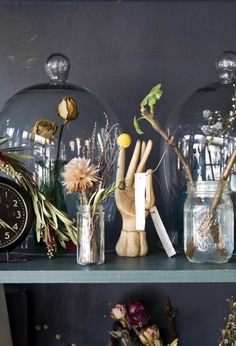 Shopper's Diary: Stems, Brooklyn's Only Flower Shop in a Bar: Gardenista Future House, Feng Shui, The Bell Jar, Bell Jars, Cabinet Of Curiosities, Deco Boheme, Style Deco, Blog Deco, Deco Design
