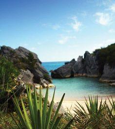 Jobson's Cove,Bermuda