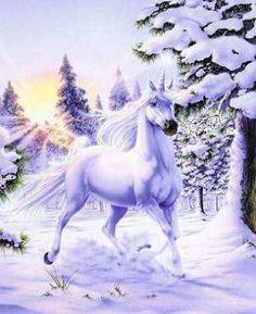 unicorn | Fantasy Unicorn - Fantasy Photo (24435223) - Fanpop fanclubs