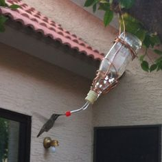 Homemade Hummingbird Feeder and Food.