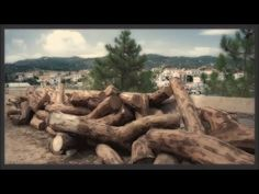 Spetses - The Dockyards Video Photography, Amazing Photography, Greece, Videos, Greece Country