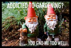 Garden Humor.   Visit www.jollylane.com to learn more about our Rapid City greenhouse.