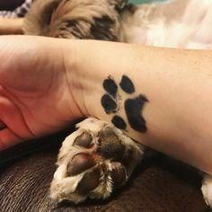 98 Best Best Paw Print Tattoo Meanings, Paw Print Tattoo Meanings, 40 Amazing Dog Paw Tattoo Design Ideas In 47 Tiny Paw Print Tattoos for Cat and Dog Lovers, 65 Best Paw Print Tattoo Meanings and Designs Nice Trails. Hand Tattoos, Tattoo Femeninos, Tattoo Motive, Body Art Tattoos, Horse Tattoos, Sleeve Tattoos, Luck Tattoo, Gorgeous Tattoos, Great Tattoos