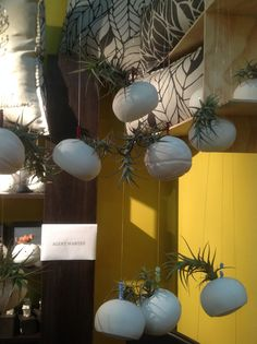 These adorable hanging air plants were hard to miss on YilaSophia Ceramics' stand in the Craft Collective. Hanging Air Plants, Ceramics, Crafts, Ceramica, Pottery, Manualidades, Ceramic Art, Handmade Crafts, Craft