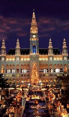 Vienna during Christmas, Austria. Re-pinned by #Europass                                                                                                                                                                                 Mais