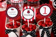 Ladybug Invitation, Ladybug invite, Ladybug Birthday, Ladybug Party, Ladybug…