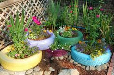 """My version of the """"tire"""" garden I found on pinterest!   A nasty little gopher has been messing it up, though."""