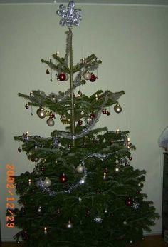 Christmas tree, Christmas 2002, Denmark