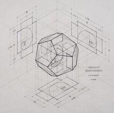 Galería de Rafael Araujo fusiona el arte y la ciencia ilustrando a mano la Proporción Áurea - 12