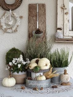 White pumpkins, galvanized containers and plants. Lovely for early Autumn. White pumpkins, galvanized containers and plants. Lovely for early Autumn. White Pumpkins, Painted Pumpkins, Fall Home Decor, Autumn Home, Early Autumn, Diy Autumn, Autumn Garden, Pumpkin Flower, Deco Floral