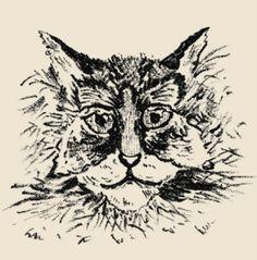Una mariposa forma el rostro del gato. Sobre el autor More at