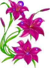 Plants Got it and so do you! animated gifs of flowers- purple flowers