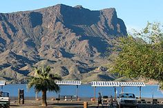 Cattail Cove S.P., Western Arizona, USA. Lake Havasu was formed when the Colorado River was dammed near Parker.