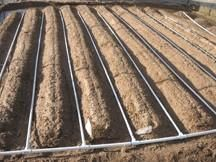 How to Build A Drip Irrigation System  For cheap