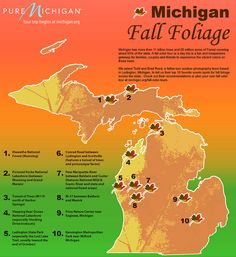 Todd and Brad Reed's top 10 picks for fall color tours in Michigan by Pure Michigan Fall In Michigan, State Of Michigan, Detroit Michigan, Northern Michigan, Lake Michigan, Traverse City Michigan, Western Michigan, Michigan Vacations, Michigan Travel