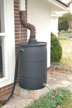 Rain Barrel Basics Post and Podcast