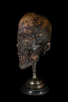 ஜ Mummified Human Head. Mounted by Ryan Matthew. Photo by Sergio Royzen ஜ