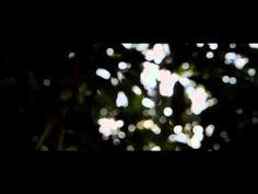 Tjo Su Bio - Nikon d3200 video 24fps - YouTube