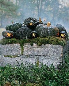 jap pumpkin spider lights