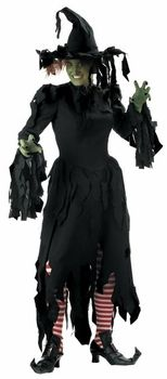 Adult size witch plus costumes
