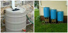 Cum colectam si folosim apa de ploaie in avantajul nostru – Idei pentru gradina