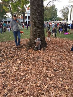 This little girl is a squirrel trying to climb a tree http://ift.tt/2evgufK