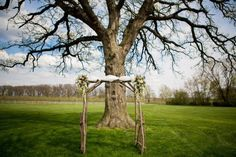 Outdoor Ceremony Backdrop Inspiration : Branch Archway