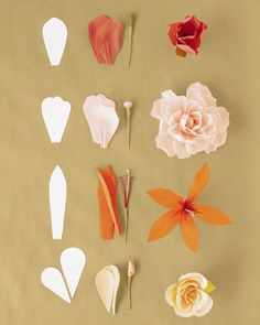 The single-petal method, as its name implies, is used to build a flower petal by petal. Each petal is individually shaped and pleated before being attached to the stem. To construct one of these flowers, first make the appropriate stamen from crepe paper and floral wire and cut the necessary number of petals and leaves from crepe paper. Then shape the petals, and attach them to the stamen with floral tape.