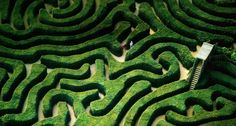 Added to the historic grounds in 1975, the Longleat Hedge Maze is the largest of several mazes on the property. Constructed of more than 16,000 English yews while covering 1.48 acres and 1.69 miles of pathway, Longleat is the longest hedge maze in the world.