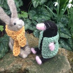 We took Mr Mole and Rabbit outside in the garden today for some photographs amongst the snow drops.
