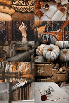 Autumn in Hogwarts. Autumn Aesthetic, Aesthetic Collage, Harry Potter Aesthetic, Autumn Cozy, Autumn Fall, Hello Autumn, Autumn Inspiration, Fall Season, Collages