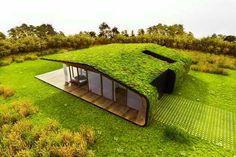 Prato sul tetto in una casa moderna