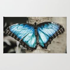 Black And White Blue Morph Butterfly Rug by Redhedge Photos - $28.00