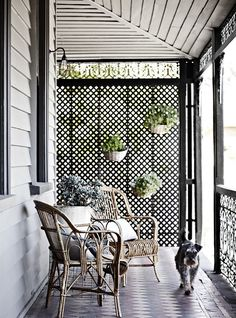 A lattice screen provides dappled light, privacy and the perfect foundation to attach vertical garden pots.>>>flower pot idea for our patio. Outdoor Rooms, Outdoor Living, Ideas Terraza, Lattice Screen, Lattice Wall, Patio Privacy, Privacy Screens, Porch Privacy Screen, The Design Files