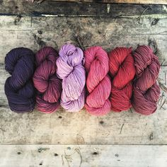 Colors of Madder : Wren House Yarns