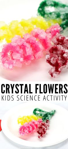 A crystal flowers spring science experiments makes a sparkling bouquet and science craft. Our crystals flowers are also great for Mothers Day activities. Flower Activities For Kids, Science Activities For Kids, Spring Activities, Fun Crafts For Kids, Craft Activities, Diy For Kids, Preschool Science, Preschool Classroom, Kindergarten