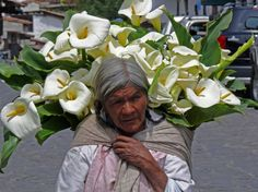 Woman selling beautiful calla lilies in Mexico.