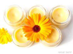 Ringelblumen Heilrezepte - lekker.berlin | Rezepte und mehr ... Ringelblumentinktur, Ringelblumenöl und Ringelblumensalbe - Gutes Gelingen!