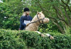 Scarecrow horse | Our entry for the village scarecrow competition – June 2nd 2012