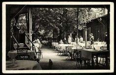 Balázs étterem a Hűvösvölgyben