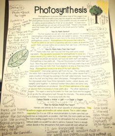 Photosynthesis AND closed reading-a winning combination!!!!