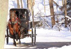 Amish buggy, Lancaster PA (Dec. 2014)